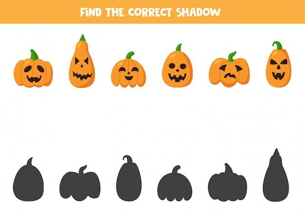 Найдите правильные тени тыкв на хэллоуин. логическая игра.
