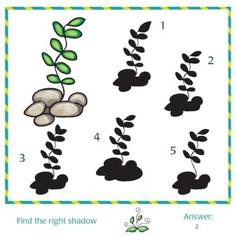 Find the shadow of picture - green grass