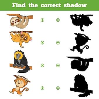 Найди правильную тень, развивающая игра для детей. векторный набор животных