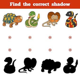 올바른 그림자, 어린이를 위한 교육 게임을 찾아보세요. 동물의 벡터 세트