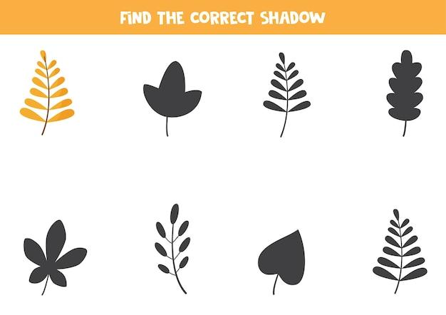 かわいい紅葉の正しい影を見つけてください。子供のための論理パズル。