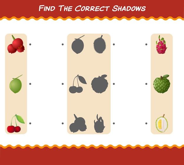 만화 과일의 올바른 그림자를 찾으십시오. 검색 및 매칭 게임. 학교 전 아동 및 유아를위한 교육용 게임