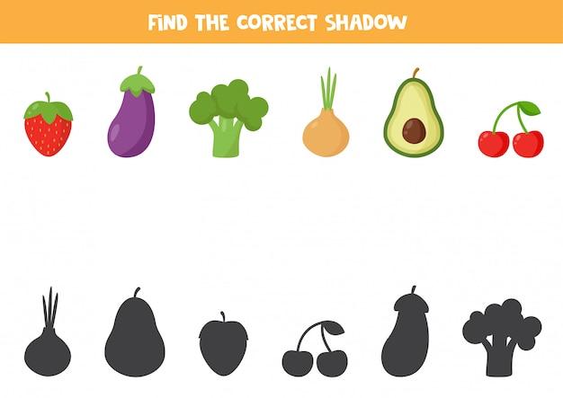 모든 과일과 채소의 올바른 그림자를 찾으십시오.