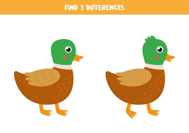 2つのかわいいアヒルの3つの違いを見つけます。