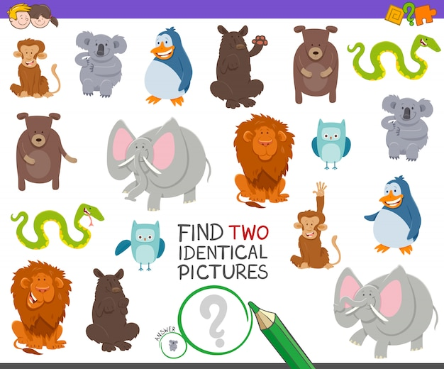 Find two identical animals educational game