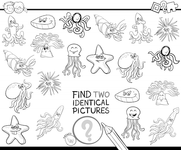 Find two identical characters coloring book