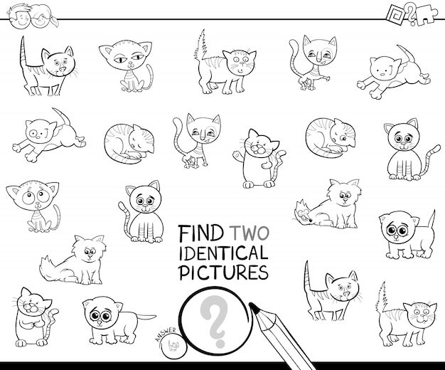Find two identical kitten pictures coloring book