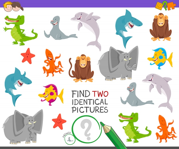 Find two identical pictures educational game with animals