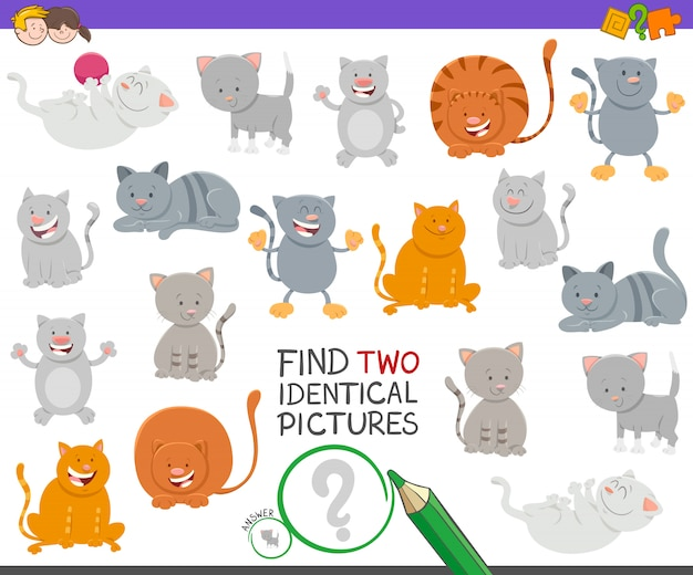 Find two identical pictures educational game