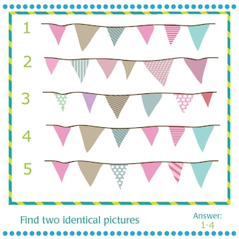 Find two identical pictures - vector flags