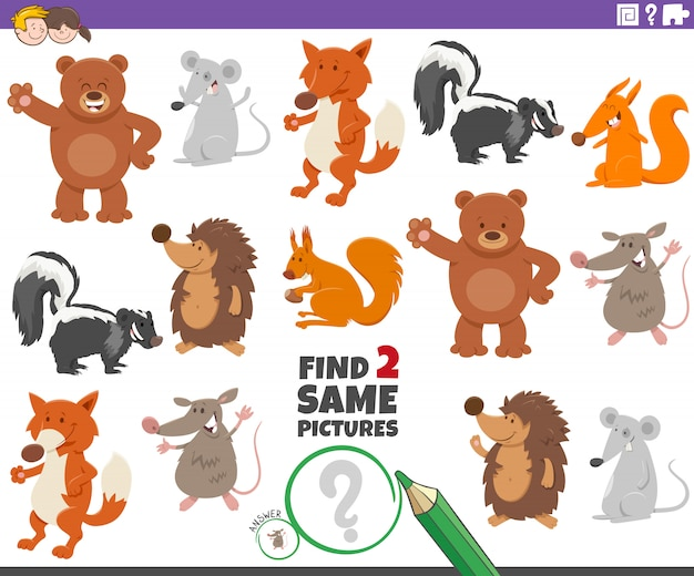 Find two same animals educational task for children