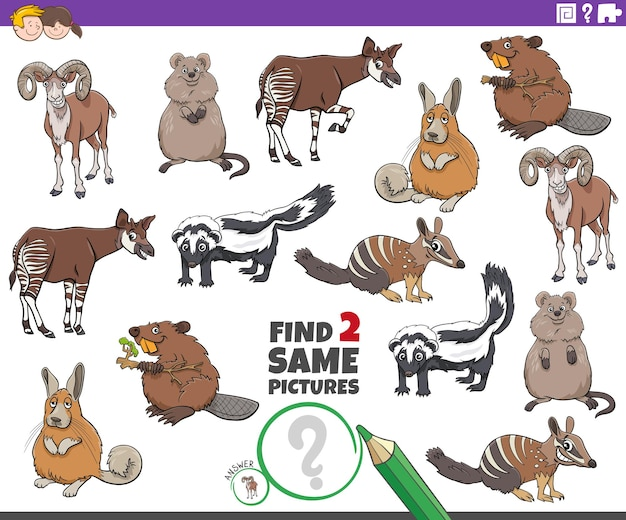 두 개의 동일한 만화 야생 동물 교육 과제 찾기