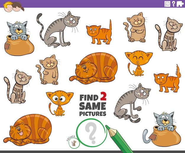 Find two same cat or kitten characters game for kids