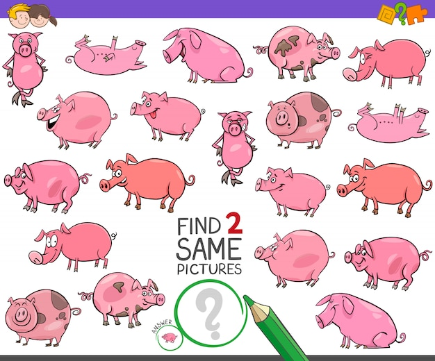 Find two same pigs characters game for kids