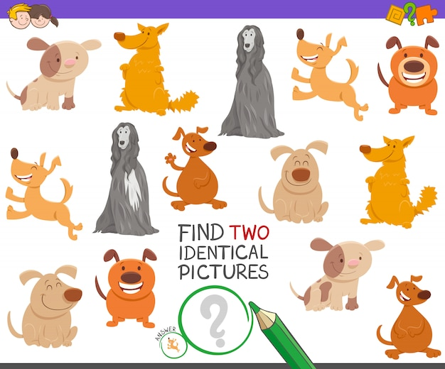 Finding two identical pictures game for children