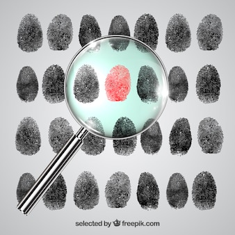 Fingerprint investigation