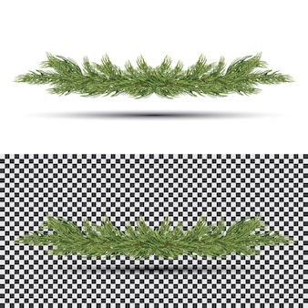 Fir branch isolate. holiday decorations with spruce tree.