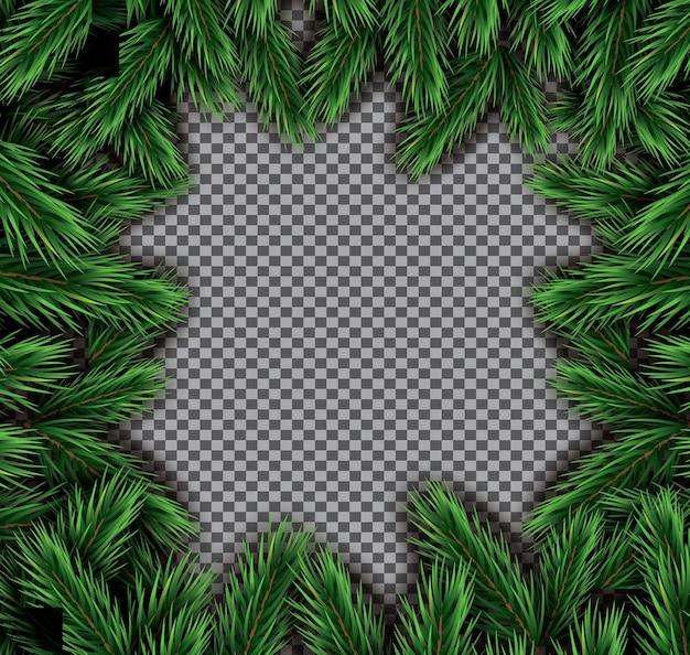 투명 한 배경에 전나무 분기 사각형 프레임입니다. 벡터 일러스트 레이 션.