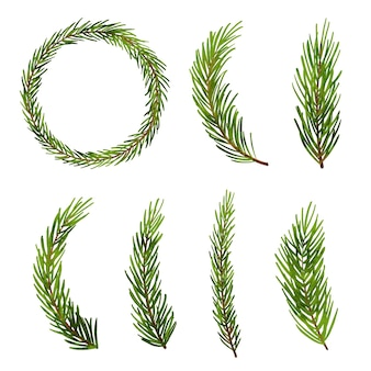 Рождественская елка ветви ели. еловая ветвь сосны, изолированные на белом фоне.