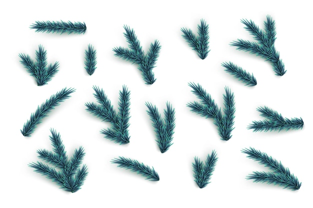 Fir tree branches and elements set vector blue christmas tree parts collection