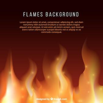 火災の背景