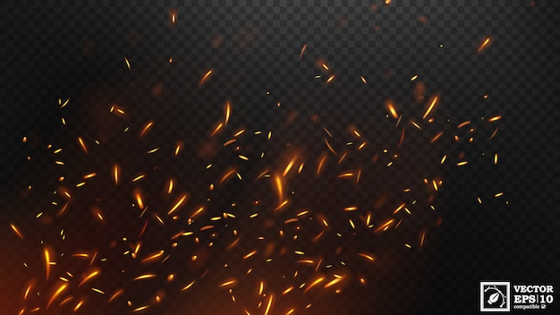 Fire flying sparks effect vector