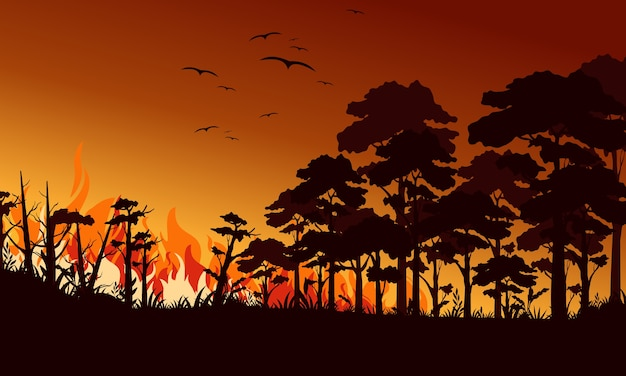 Fire in forest flat illustration. birds flying over fire flame. wildfire landscape, wildland. natural ecology disaster. burning trees and blaze wood at night. flaming woodland.