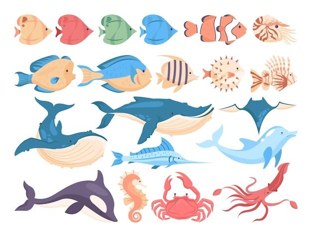Набор рыб и морских существ. коллекция водной фауны. дельфин, кит