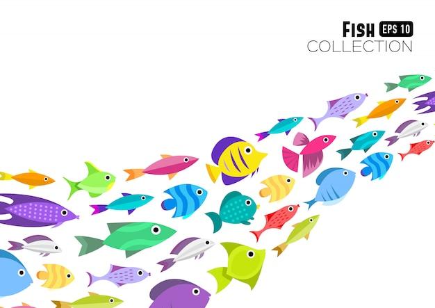 魚のコレクション。漫画スタイル。 12種類の魚のイラスト