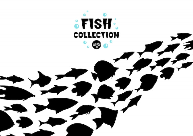 Сбор рыбы. мультяшный стиль. иллюстрация двенадцати разных рыб