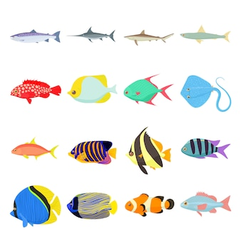 Fish icons set in cartoon style isolated vector