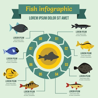 Fish infographic template, flat style