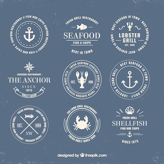 Fish logos collection for companies branding