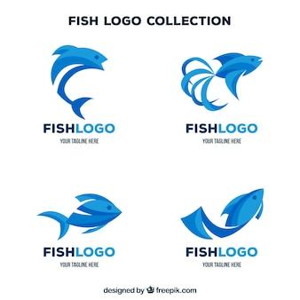 fish logo  Fish Logo Vectors, Photos and PSD files | Free Download