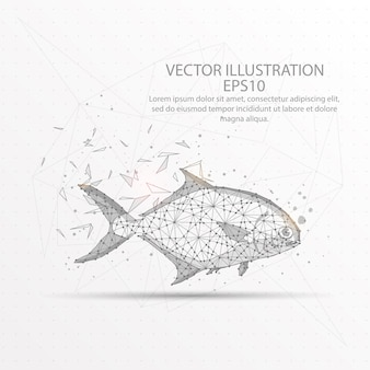Fish low poly wire frame on white background.