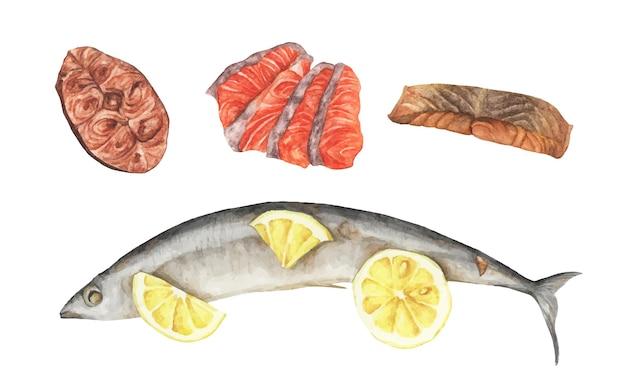 魚肉セット。魚のレモン焼き、サーモンのグリル、赤身魚の切り身。シーフードセット。あなたのデザインのための水彩画の要素。