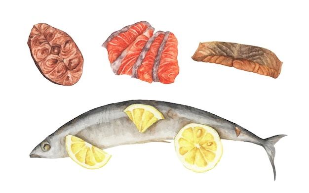 Fish meat set. grilled fish with lemon, grilled salmon and piece of red fish fillet. seafood set. watercolor elements for your design.