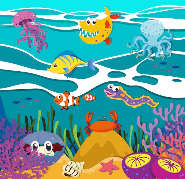 Fish and sea animals under the ocean