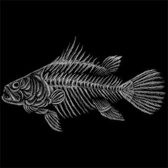 刺青やtシャツのデザイン用の魚の骸骨。かわいいスタイルの魚の骨格。