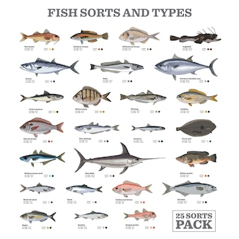 Fish sorts and types