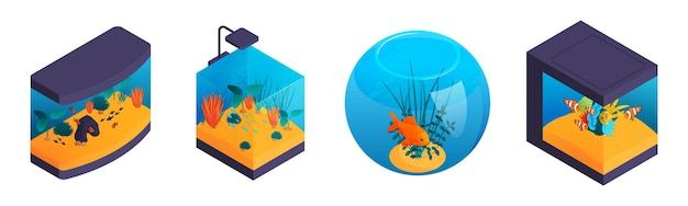 Illustrazione della decorazione del serbatoio di pesce