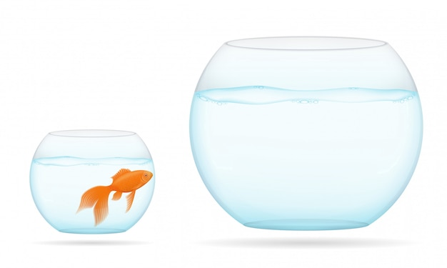 Fish in a transparent aquarium vector illustration