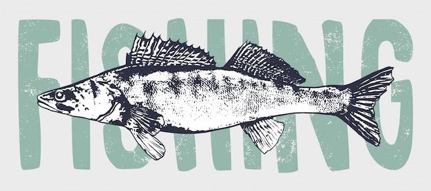 Fish vintage  art