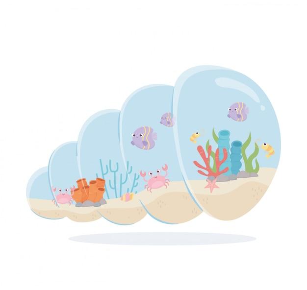 Fishes crab shrimp coral snail shell shaped aquarium under sea cartoon vector illustration