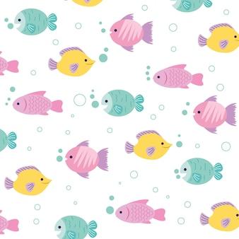 魚のパターンの背景漫画