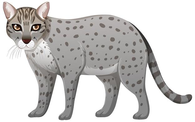 Gatto pescatore in stile cartone animato su sfondo bianco