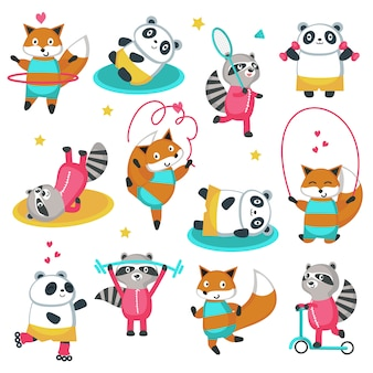 Fitness raccoon panda foxicon set