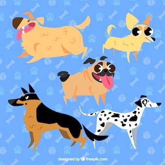 Пять конструкций для собак Premium векторы