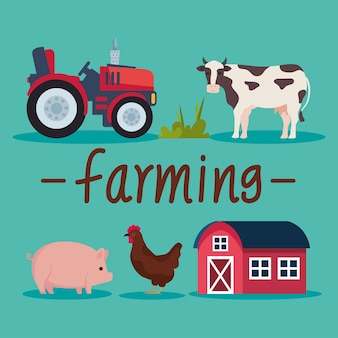 Пять иконок сельского хозяйства сельского хозяйства