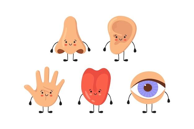 5つの人間の感覚器官のかわいい文字セット。鼻、耳、手、舌、目が手をつないでいます。かわいい感覚器官。見て、聞いて、感じて、嗅いで、味わってください。白い背景で隔離のベクトルイラスト